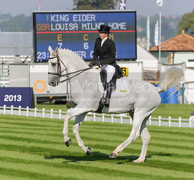 Louisa Milne Home and KING EIDER - dressage phase,  Land Rover Burghley Horse Trials, 5th September 2013.