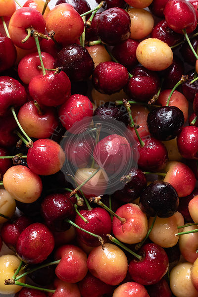 Fresh Sweet and Rainier Cherries