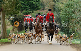George Pierce leads the Belvoir hounds to the meet