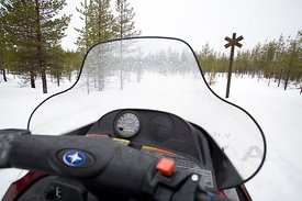 Snowmobile on Marked Snowmobile Trail