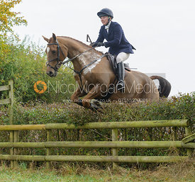 jumping a hedge near Wilson's - The Cottesmore at Langham.
