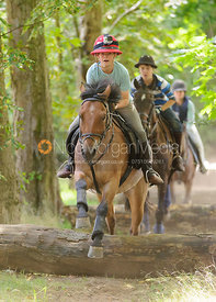 Ned Forryan - Hare Park Woodland Camp 2014 - Newmarket, Suffolk