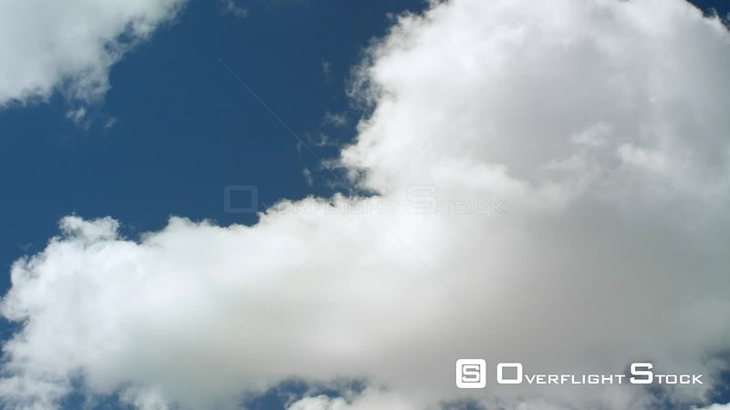 Cumulus clounds float in a cobalt blue sky