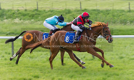 AGA 148cms Open Championship Final - Pony Racing - MSSH Point to Point 2014