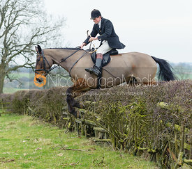 Jack Bevan jumping a hedge near Wilson's covert