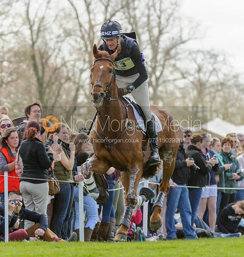 Image Mark Todd And Major Milestone Cross Country