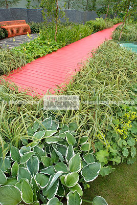 Border, Contemporary garden, Green, Monochrome, Perennial, Red, Single color, Single colour, Wooden footbridge, Digital, Grasses, Ornamental foliage, Path, Scenery, Variegated