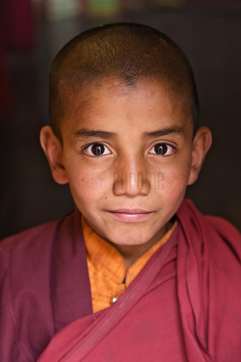 Portrait of a Young Monk