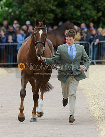Tom McEwen and DRY OLD PARTY - First Horse Inspection, Mitsubishi Motors Badminton Horse Trials 2014