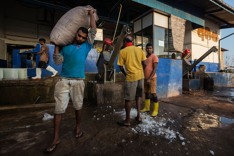 Fish Market Worker Carrying a Bag of Ice to Store Freshly Caught Fish