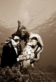 Egypt, Red Sea, underwater wedding