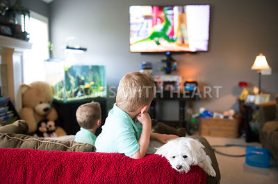 Male child watching tv with dog