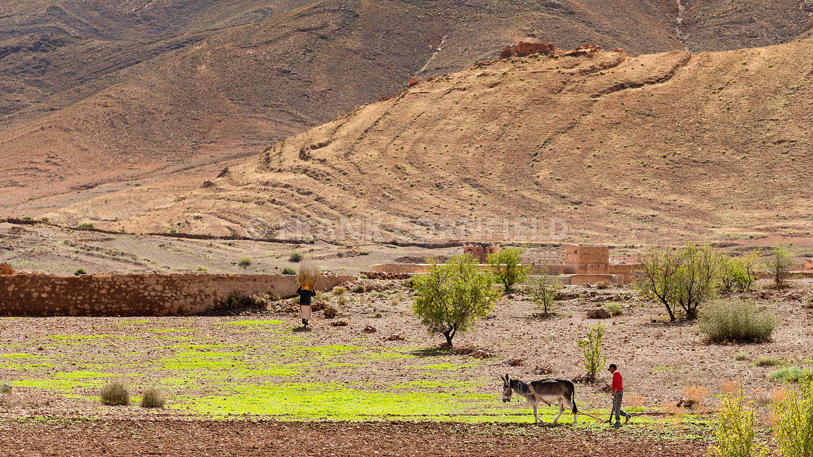Farmer and his wife working in the Middle Atlas, Morocco.