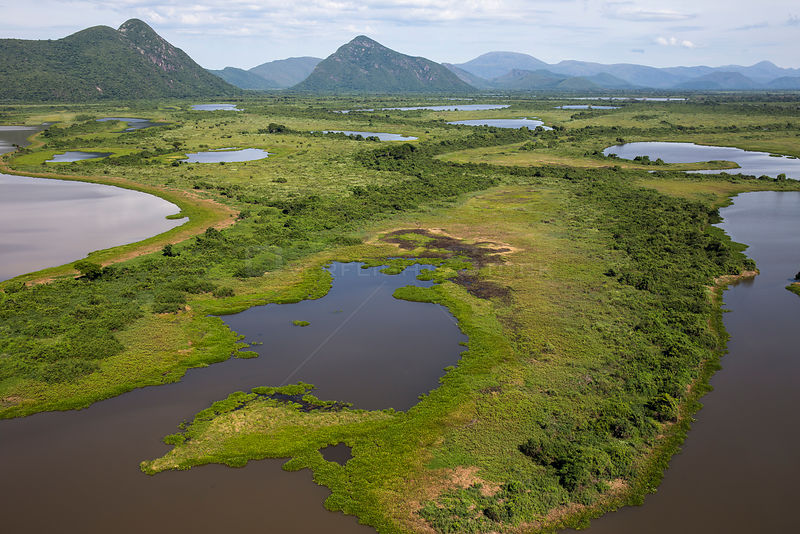 Aerial view of the Pantanal, end of the dry season. Near the  area of the Rio Paraguay or Paraguay river, north of Corumba, Brazil. November..