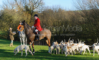 The Cottesmore Hunt at Stockerston 11/1 photos