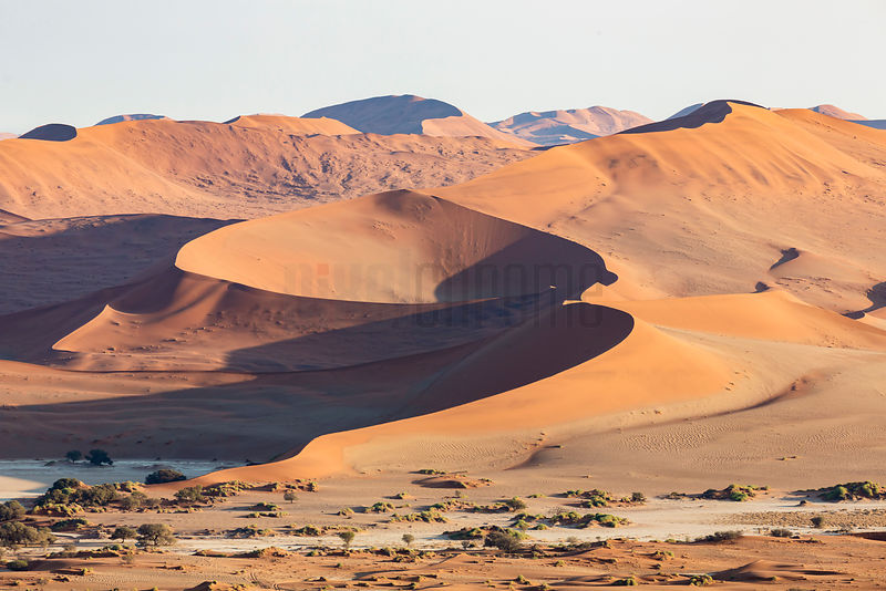 Elevated View of Sossusvlei