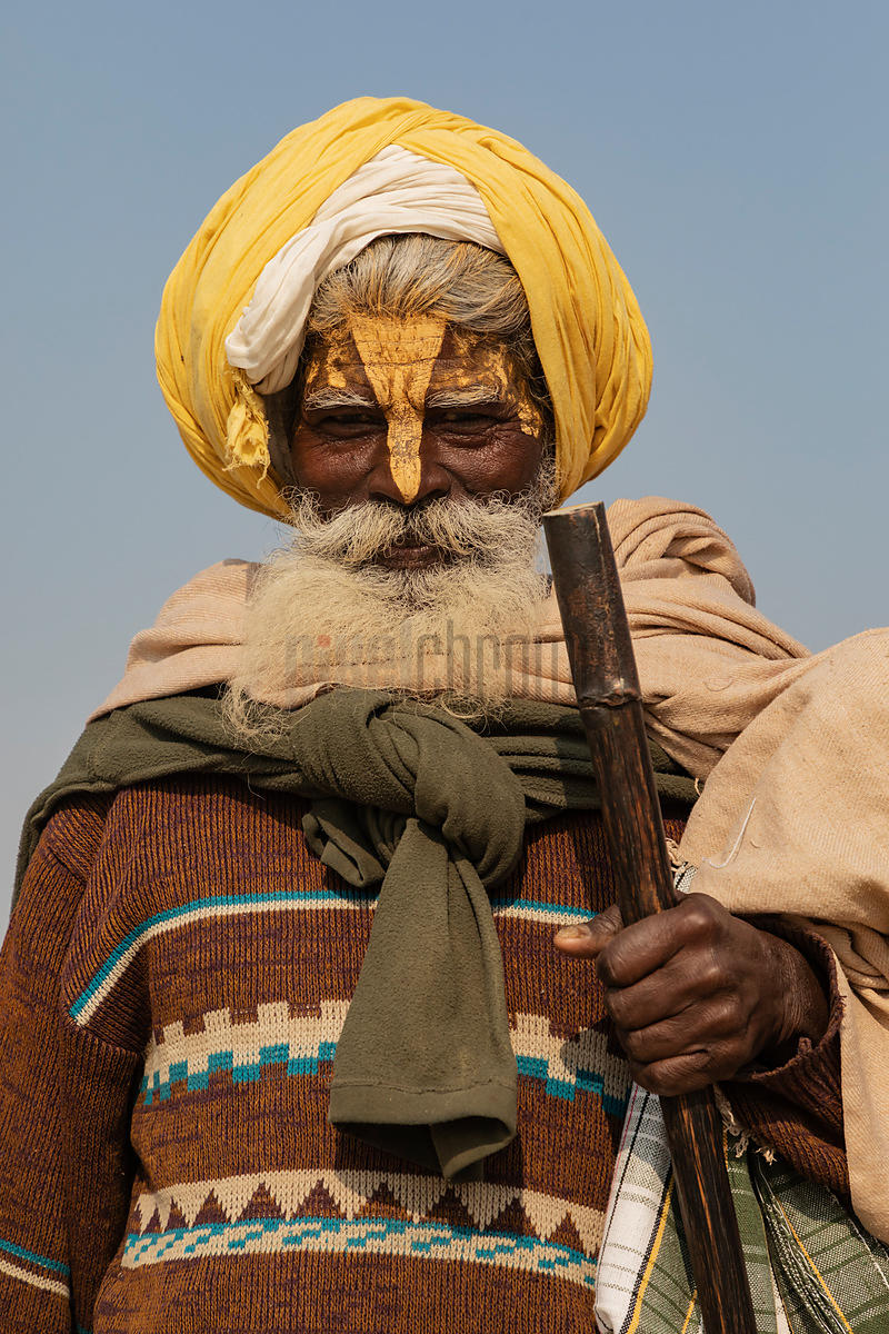 Portrait of a Sadhu with a Yellow Turban
