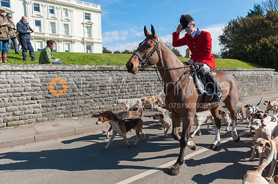 The South Notts Hunt at Colston Bassett Hall 14/3 photos