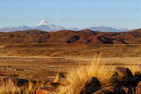 View across altiplano to Mt Huayna Potosi, ichu grass clump (Jarava ichu) in foreground, Cordillera Real, Bolivia