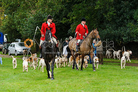 Hounds arrive at the meet - Fitzwilliam Opening Meet, Milton Park 6-11-13