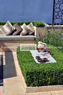 Haie basse sur une terrasse : Buxus sempervirens (buis), table basse. Paysagiste : Raine Clare-Wills, Hampton Court, Angleterre