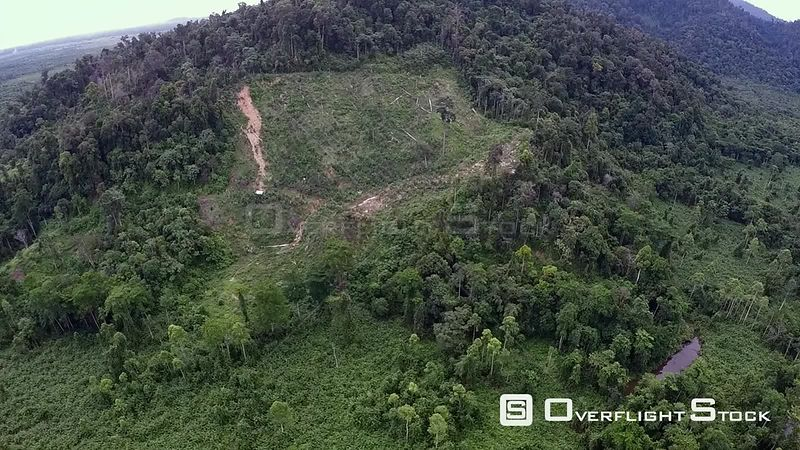 Aerial view of rainforest, showing forest clearance and start of erosion gully on hillside, Suaq Balimbing, Kluet Swamps, Sumatra, Indonesia. 2015.