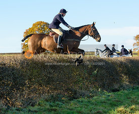 jumping a hedge at Barrowcliffe Farm 18/11