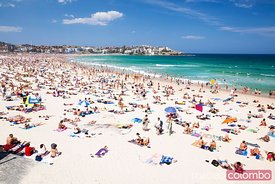 New year's day at Bondi beach, Sydney