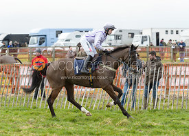 DE BLACKSMITH (Aaron Anderson) - Race 5 - Nine-year-olds and over - The Brocklesby at Brocklesby Park