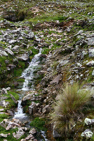 Waterfall on hillside near Abra Calderillas pass, Cordillera de Sama Biological Reserve, Bolivia