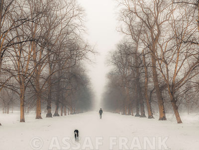 Hyde Park landscape covered in snow, London, UK