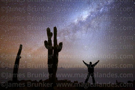 Tourist standing in front of zodiacal light and next to Echinopsis atacamensis (pasacana subspecies) cactus looking at Milky Way, Incahuasi Island, Salar de Uyuni, Bolivia
