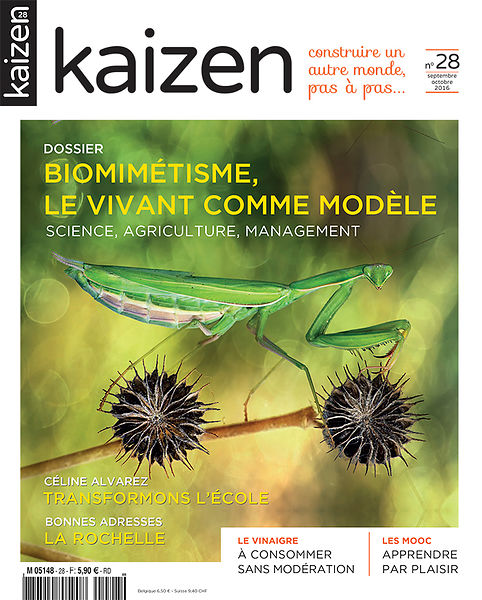 Kaizen Magazine (France) - Sept 2016 photos