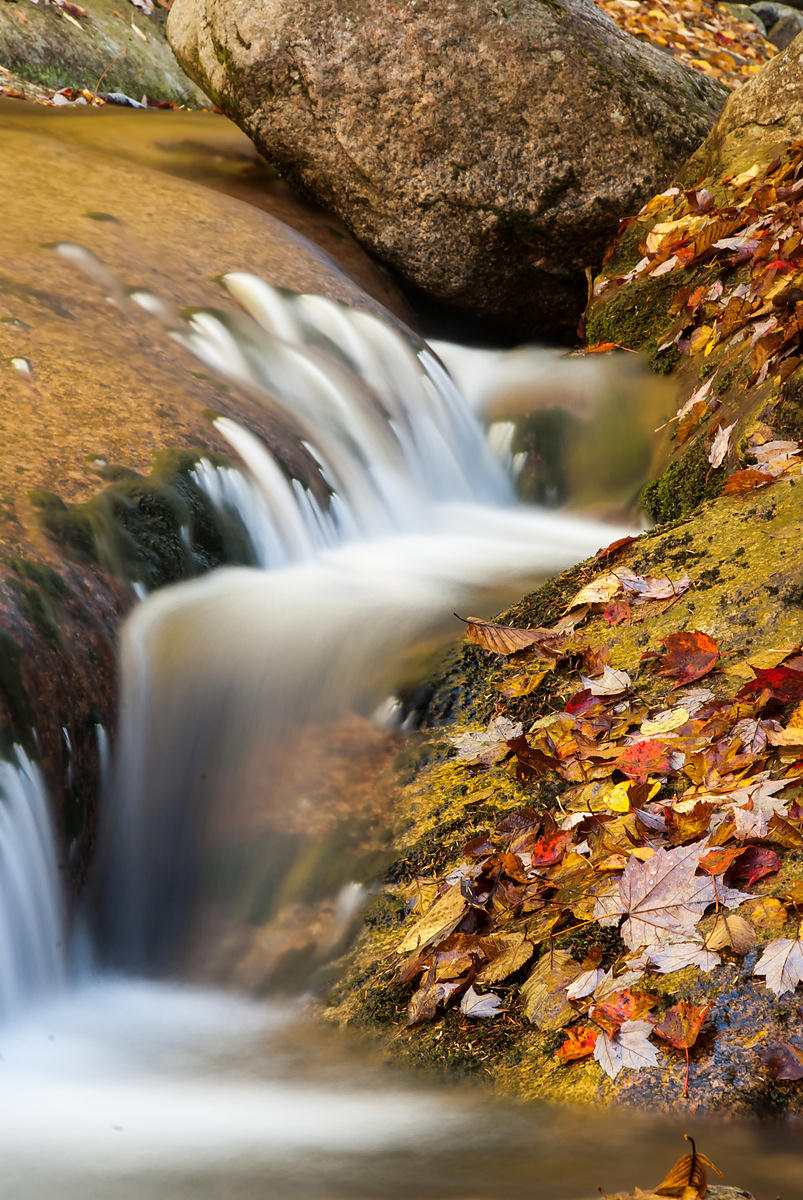 Mountain Stream in the White Mountains, New Hampshire