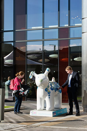 Snow Dog at Crowne Plaza Stephenson Quarter Newcastle