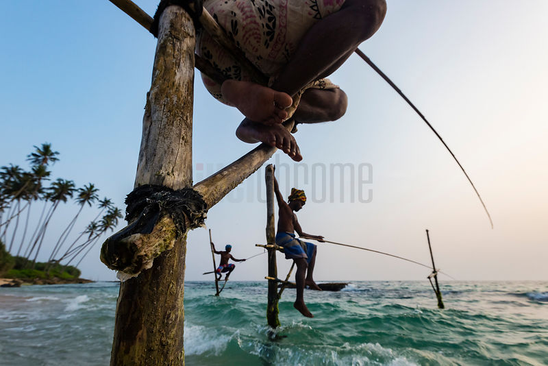 Traditional Stilt Fishermen