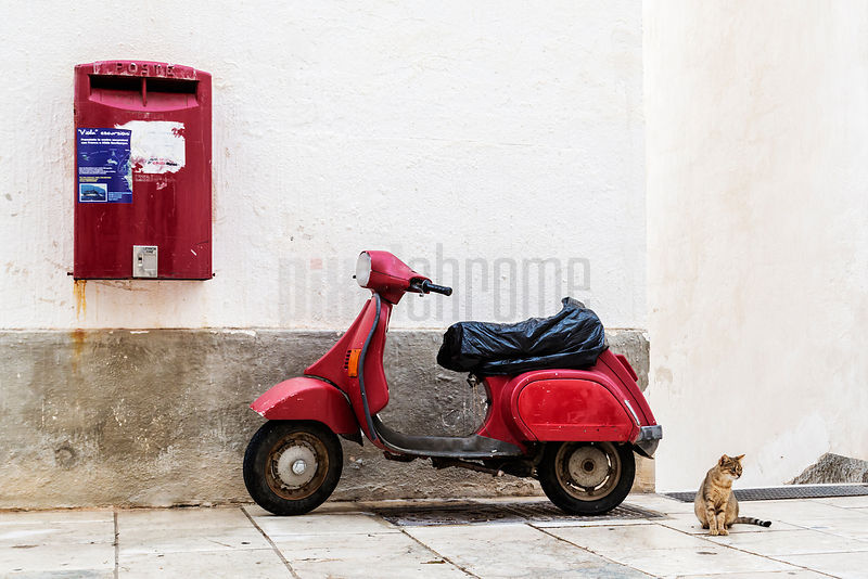 Scooter, Post Box and Cat Against White Wall