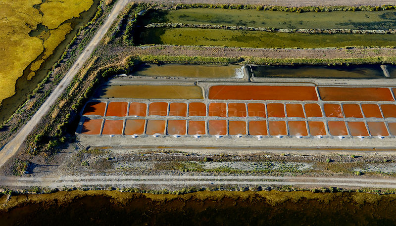 Salt evaporation ponds on Isle de Re, Charente-Maritime, France, Atlantic Coast. July 2017. The colours are produced by the concentration of algae or halobacteria that live in the ponds which indicates the pond's salinity.
