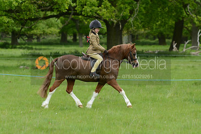 Class 17 - BSPS Heritage M&M Pretty Polly (RIHS) First Ridden photos