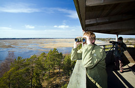 The bird watching tower on Kärjenkallio is one of the biggest in the Nordic countries