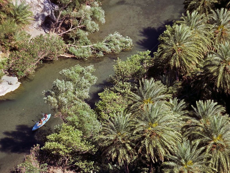 Aerial view of people kayaking on the river Megalos Potamos, between the endemic Cretan palm trees (Phoenix theophrasti) Crete, Greece