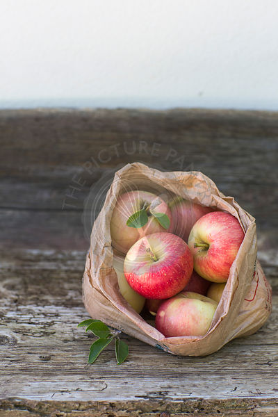 apples, red, green, fruit, autumn, rustic bench, white background, outdoors, in brown paper bag, juicy, fresh, healthy eating,