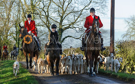 Huntsman and hounds arriving at the meet