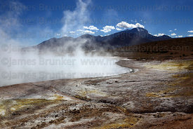 Sulphur deposits on shore of hot springs at Polloquere , Salar de Surire , Region XV , Chile