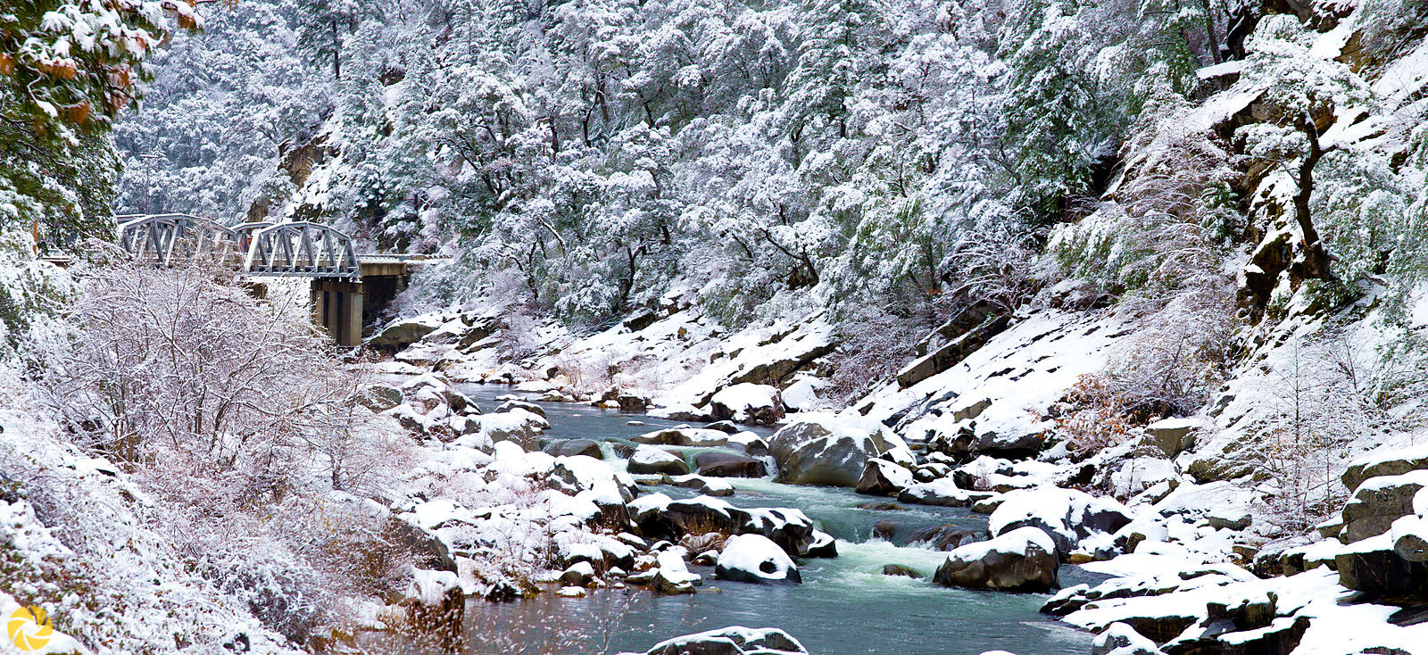 Winter along the Feather River #5