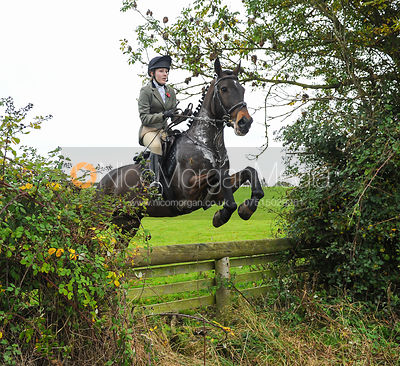 The Cottesmore Hunt at Toft 31/10 photos