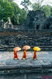 Buddhist monks with umbrellas in a temple, Angkor Wat, Cambodia