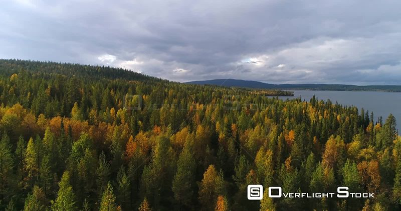 Autumn Color Forrest, Aerial View Over Colorful Autumn Trees, Towards Savijarvi Lake and Fjeld Tunturi Peaks, on a Sunny and Rainy Fall Day, Near Pallasyllas National Park, Lapland, Finland