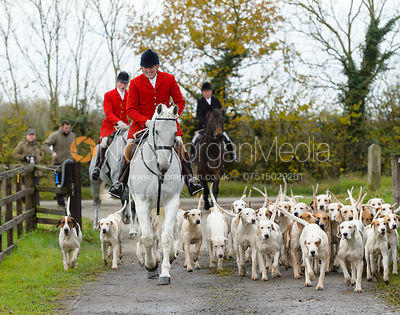 The Quorn Hunt at Fox Covert Farm 13/11 photos