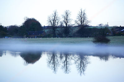 Mist and Reflection Of Trees Across a Flooded Field